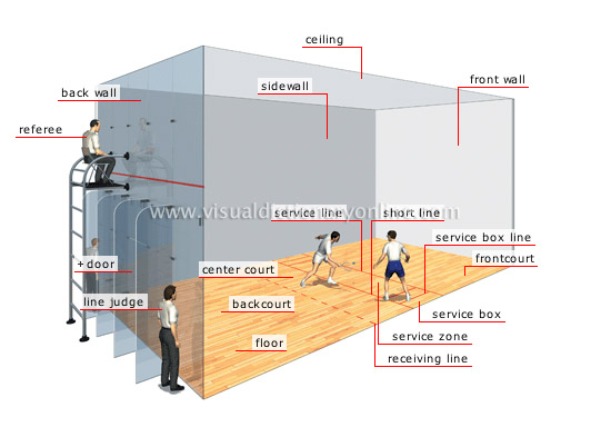 Sports games racket sports racquetball court for Build a racquetball court