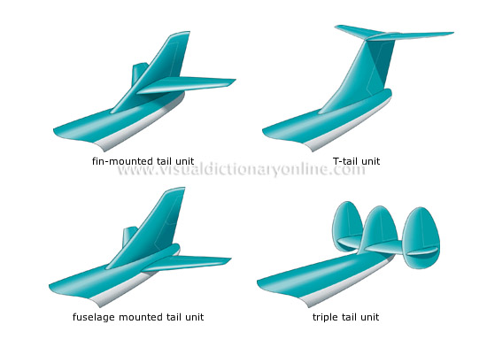 examples of tail shapes